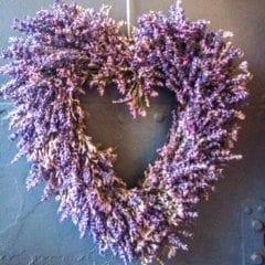 lavendar-heart