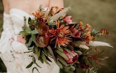 wild floristry